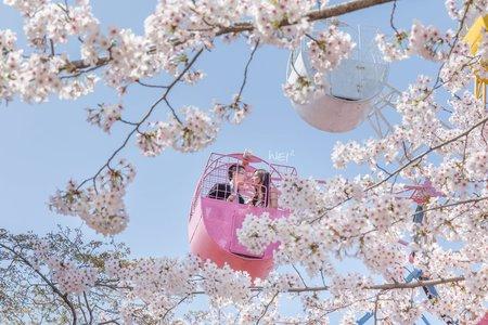 海外自助婚紗-日本