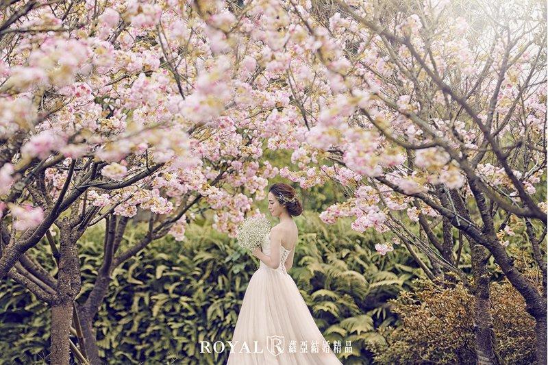 蘿亞結婚精品