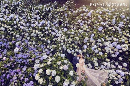 【蘿亞結婚精品】婚紗攝影-幸福30組