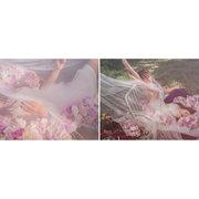 桔子&蝴蝶婚紗攝影工作室!