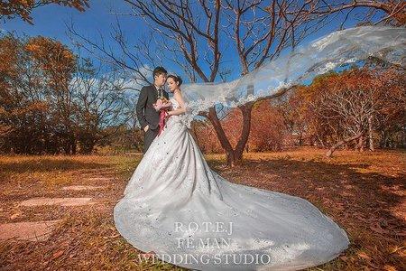 客製化婚紗自主婚紗限量100組優惠唷