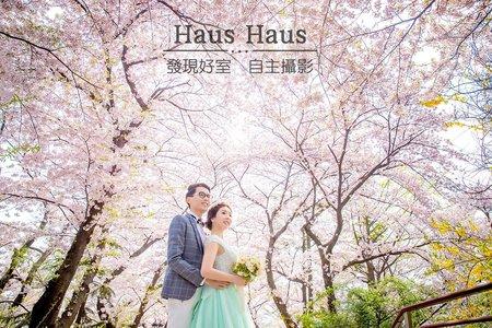 韓劇拍攝地海外旅拍 x 首爾  | HAUS
