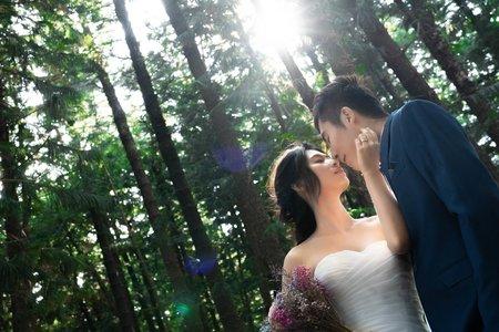 台中森林系婚紗