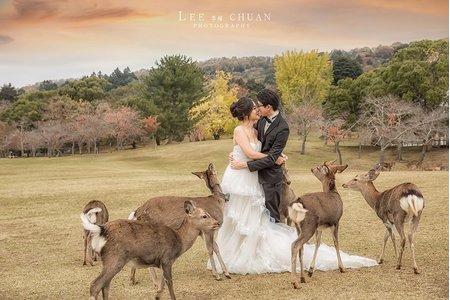 『海外婚紗』-京都奈良