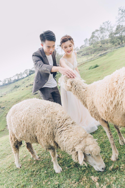 綿谷結婚式-台中店,南投外拍-綿谷結婚式-台中店